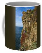 Rocky Cinque Terre Coffee Mug