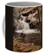 Rocky Fork Falls Coffee Mug