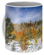 Rocky Mountain Autumn Storm Coffee Mug by James BO  Insogna