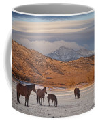 Rocky Mountain Country Morning Coffee Mug