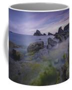 Rocky Shoreline Coffee Mug