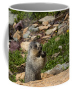 Rodent In The Rockies Coffee Mug
