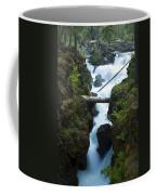 Rogue River Falls 1 Coffee Mug