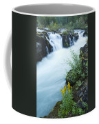 Rogue River Falls 5 Coffee Mug
