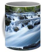 Rogue River Falls 9 Coffee Mug