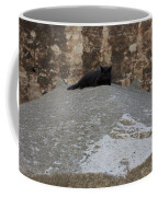 Rome Cat Coffee Mug
