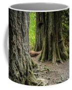 Root Feet Collection 1 Coffee Mug