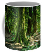 Root Feet Collection 3 Coffee Mug