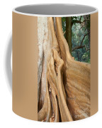Root Of A Tree Nature Background Coffee Mug