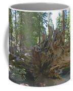 Roots Coffee Mug by Barbara Snyder