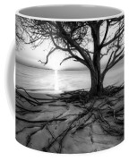 Roots Beach In Black And White Coffee Mug