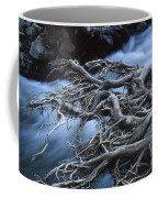 Roots Over Ozark Stream Coffee Mug by Garry McMichael