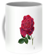 Rose 1 Coffee Mug