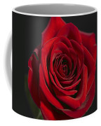 Rose 11 Coffee Mug