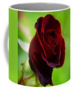 Rose 3 Coffee Mug