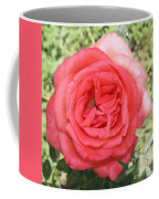 Rose At Clark Gardens Coffee Mug