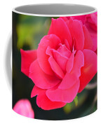 Rose Bush Coffee Mug