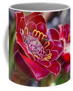 Rose De Porcelaine Coffee Mug