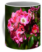 Rose Garden 4 Coffee Mug
