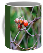 Rose Hip Wet Coffee Mug