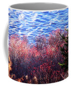Rose Hips By The Seashore Coffee Mug