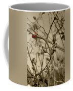 Rose Hips Coffee Mug