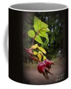 Rose Hips Reaching Coffee Mug