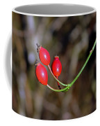 Rose Hips Coffee Mug