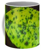 Rose Leaf Coffee Mug by Sonali Gangane