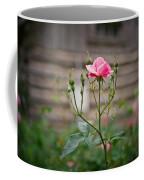 Rose Of Independence Coffee Mug