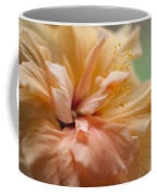 Rose Of Sharon. Hibiscus Coffee Mug