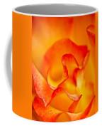 Rose Petals Closeup Coffee Mug