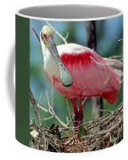 Roseate Spoonbill Adult In Breeding Coffee Mug