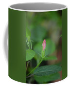 Rosemallow Bud Coffee Mug