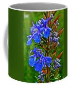 Rosemary In Park Sierra Near Coarsegold-california  Coffee Mug
