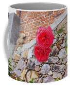 Roses Against The Wall Coffee Mug