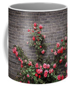Roses On Brick Wall Coffee Mug by Elena Elisseeva
