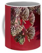 Rosy Sedum 5 Coffee Mug