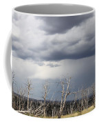 Rough Skys Over Colorado Plateau Coffee Mug
