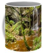 Roughting Linn Waterfall Coffee Mug