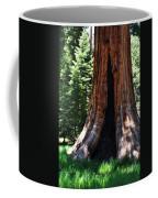 Round Meadow Giant Sequoia Portrait Coffee Mug