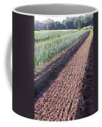 Row Row Row Coffee Mug