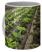 Rows Of Kale Coffee Mug