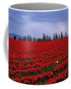 Rows Of Red Tulips With One Yellow Tulip  Coffee Mug by Jim Corwin
