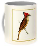 Royal Flycatcher Square Coffee Mug