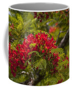 Royal Poinciana Coffee Mug