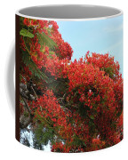 Royal Poinciana Branch Coffee Mug