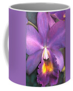Royal Purple Cattleya Orchid Coffee Mug