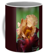 Royal Red Carpet Coffee Mug
