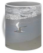 Royal Tern In Flight Coffee Mug